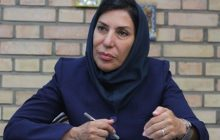 دکتر افسر افشارنادری: لایحه منع خشونت علیه زنان و کودکان سرلوحه مجلس جدید قرار بگیرد